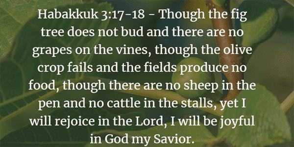 Habakkuk 3:17-18 Bible Verse