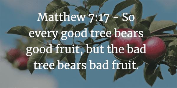 Matthew 7:17 Verse