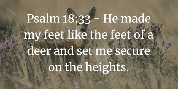 Psalm 18:33 Bible Verse