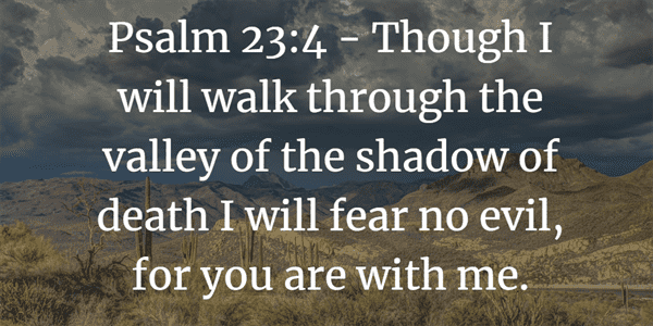 Psalm 23:4 Bible Verse