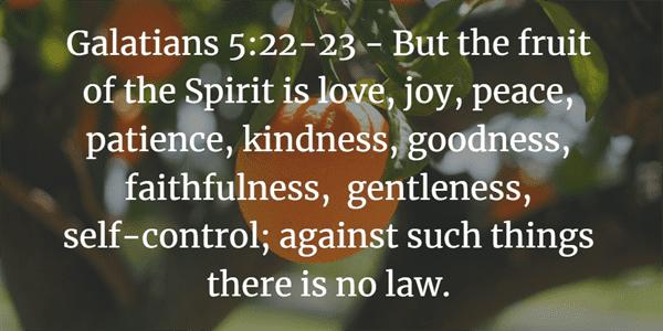 Galatians 5:22-23 Bible Verse